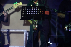 the-showers-concerto-Cisterna-di-latina-2012-0054